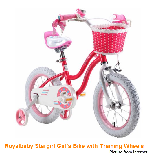 Training Wheels (picture from internet)